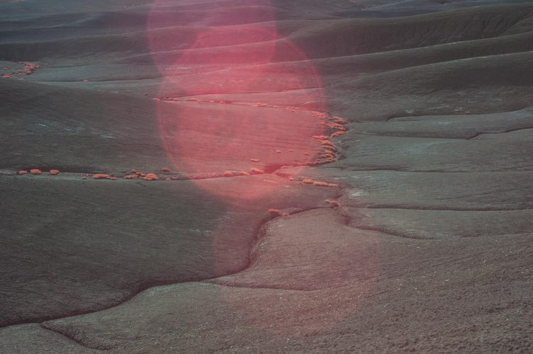 Large red lens flare and specks of red foliage on a crevice of black dirt