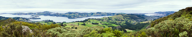 A veeeery wide panorama of the Otago peninsula, with interlocking farm, forest, and sea.