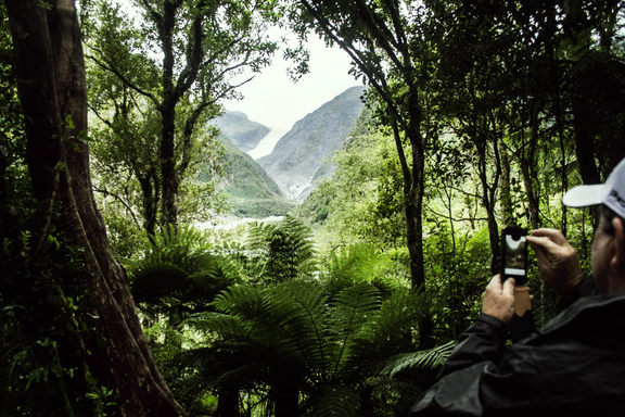 A man taking a cell phone picture of a glacier, from a rainforest.