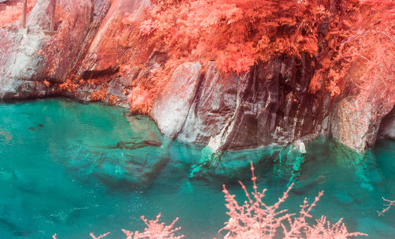 Turquoise clear water, red foliage on rocks.