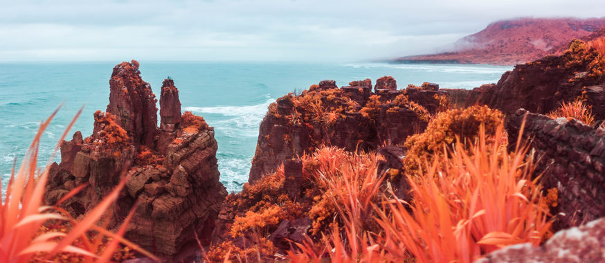 Dramatic rocks (the pancake rocks) infront of the sea. Red ferns.