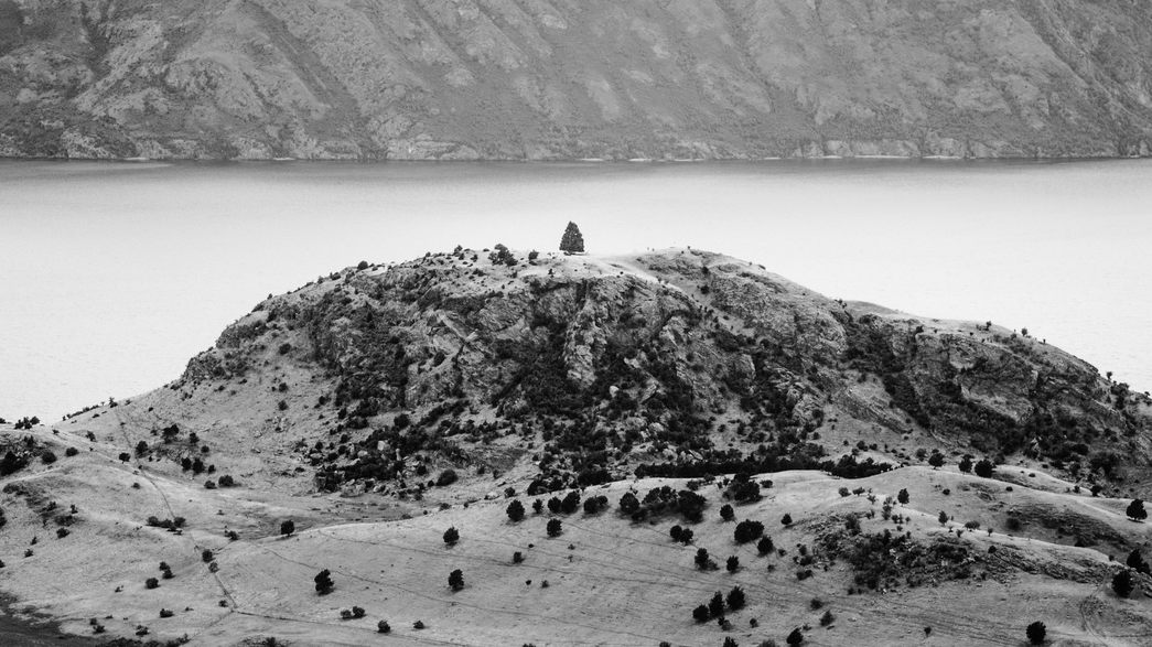A solitary little tree on top of a hill infront of a lake.